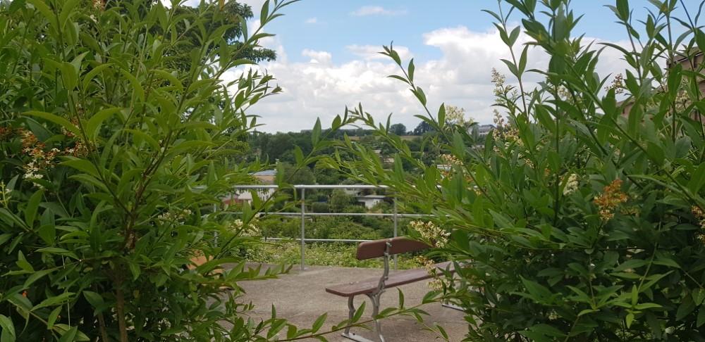 Aussichtsplattform von hinten